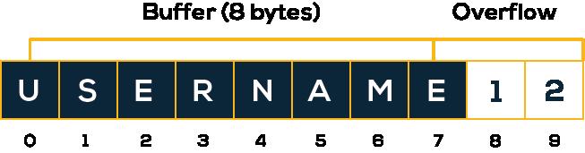 Exemplo de Buffer Overflow com dados inseridos em um campo para login de usuário